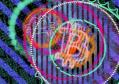 不可替代的代币如何以数字方式颠覆艺术的未来